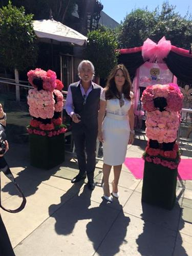 Filming Bravo's Beverly Housewives of Beverly Hills