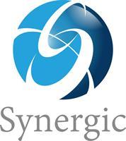 Synergic Group LLC