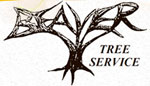 Beaver Tree Service, LLC