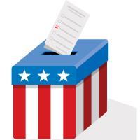 State constitutional amendments on November ballot