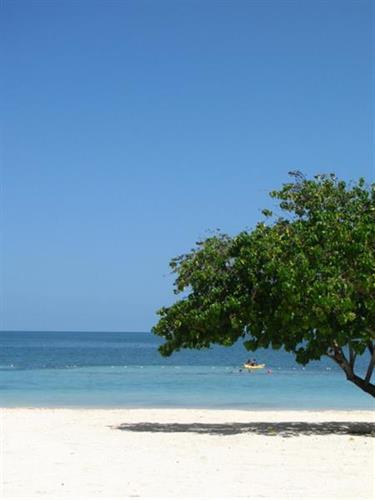 Iberostar Rose Hall Resort, Jamaica