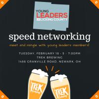 YLLC Speed Networking