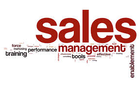 We develop your sales leaders