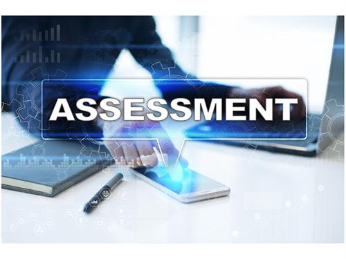 We provide assessments for hiring and development