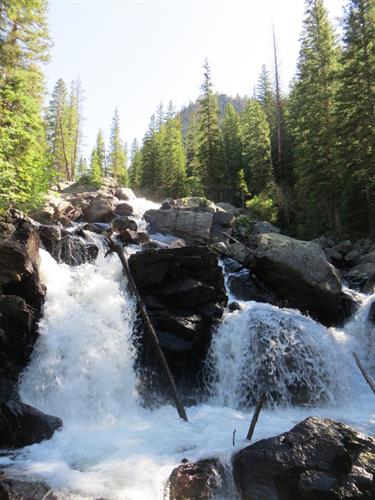 Hike to amazing Cascade Falls right from the Cabin!