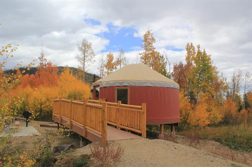 Yurts sleep 6 and are pet-friendly!