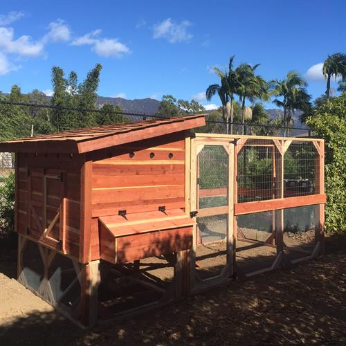 Handcrafted Chicken Coops for Backyard Chickens