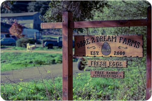 Dare 2 Dream Farms sign welcomes you to the canyon.
