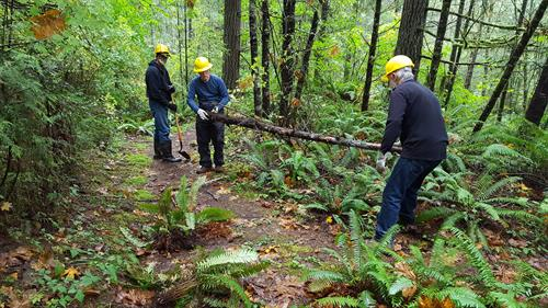 Volunteers working on trail improvement project during our 24th Annual Fall Molalla River Cleanup & Enhancement event