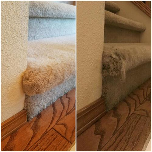 Stair Carpet Repair