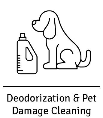 area rug pet odor removal