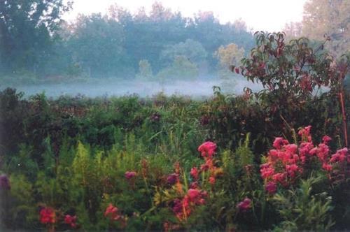 Beaver Creek Wetlands