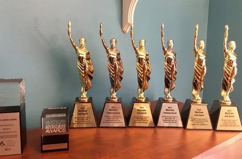 International and Regional Awards