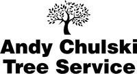 Andy Chulski Tree Service - Allendale