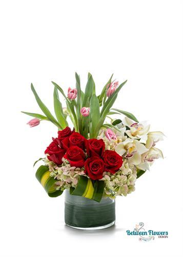 https://betweenflowers.net/tulips-crown.html