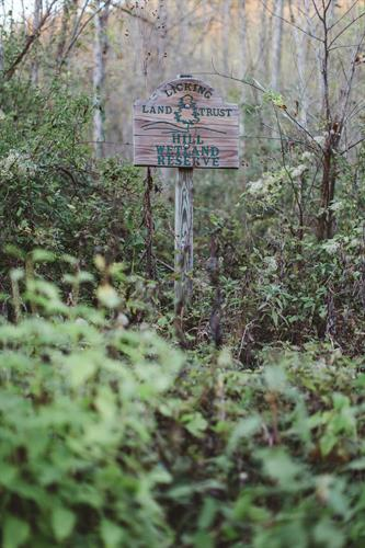 Hill Wetland Preserve, Granville