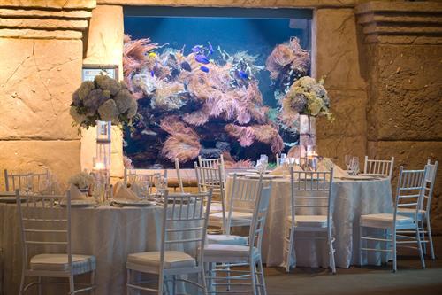 Reception/dining @ Long Island Aquarium