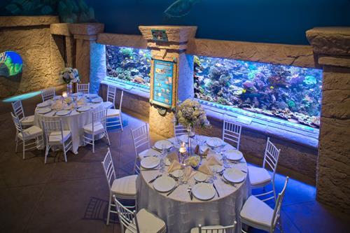 Reception/dining @ Long Island Aquarium