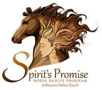Spirits Promise