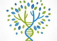 Harness the Power of DNA GENEALOGY ~ with Patricia Ann Kellner