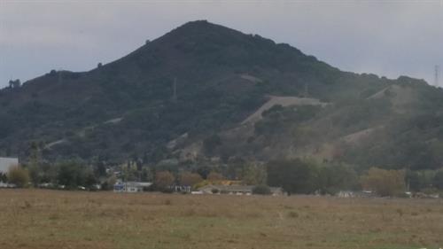 EL TORO  MORGAN HILL