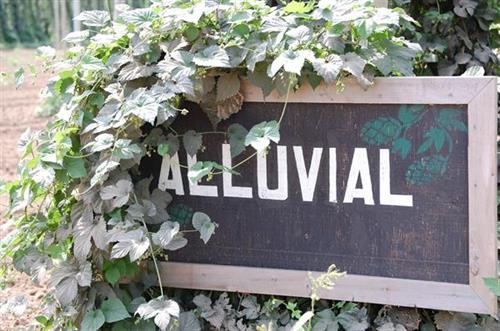 Gallery Image Alluvial.JPG