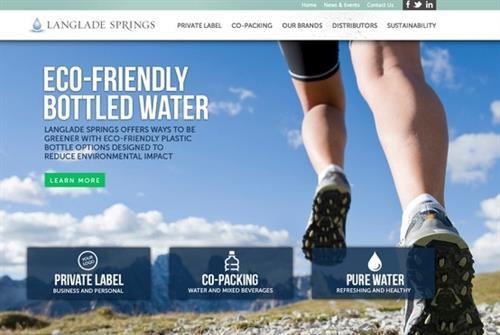 Website design by Stellar Blue for Langlade Springs