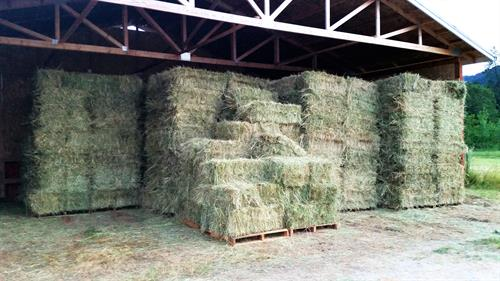 Hay in barn ready for sale.