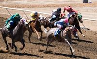 Southern Oregon Horse Racing Casino Night and Social