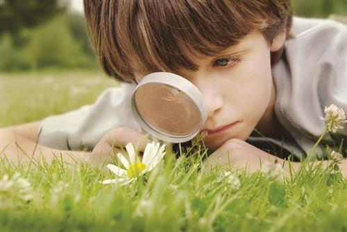 Gallery Image Boy_with_magnifying_glass_in_feild_.jpg