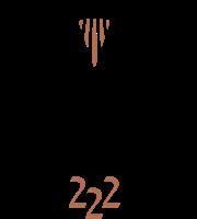 Vista222