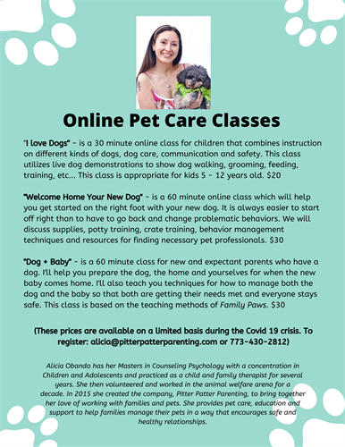 Gallery Image Online_Pet_Care_Classes_during_Covid_19.png