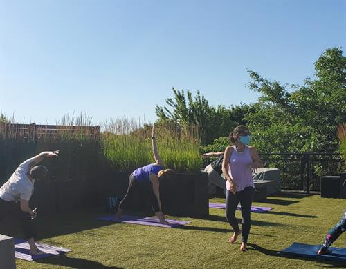 Yoga Outdoors and Rooftop Yoga