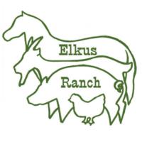 UC Elkus Ranch's Annual Sheep to Shawl