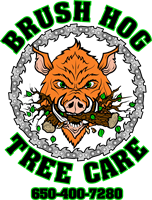 Brush Hog Tree Care LLC