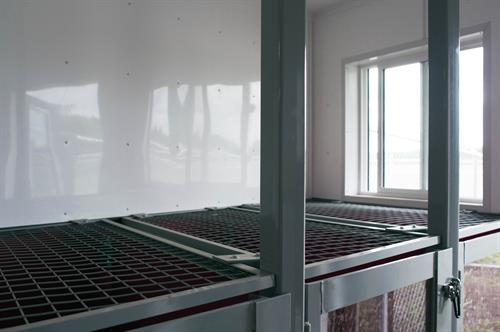 Large windows for natural sunlight and airflow.