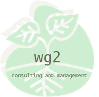 WG2 Consulting and Management