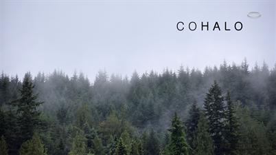 Cohalo Advisory LLC
