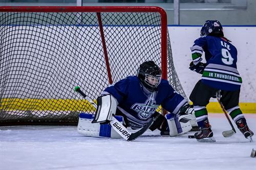 Youth Hockey League