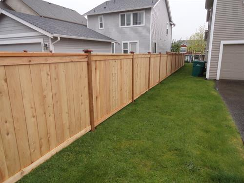 Modified Panel Fence