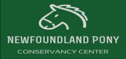 Woodbound Inn Wednesday Night Buffet to benefit the Newfoundland Pony Conservancy Center