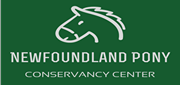 Newfoundland Pony Conservancy Center