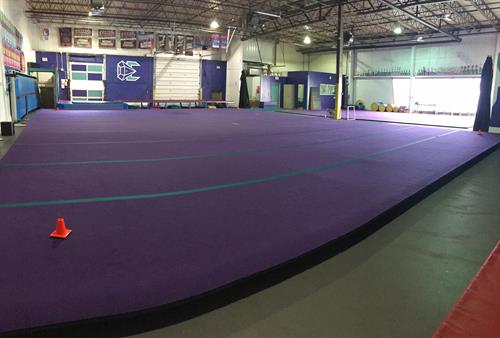 Main Purple Floor