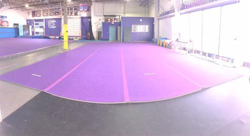 Small Purple Floor