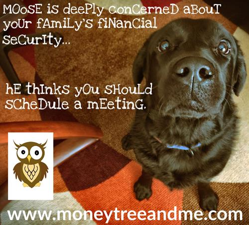 Moose is Deeply Concerned about Your Family's Financial Security...