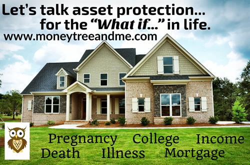 "Asset Protection for the ""What if..."" in Life"