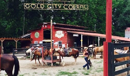Home of Gold City Corral