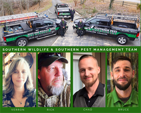 Southern Wildlife  Management, LLC - dba Southern Pest Management