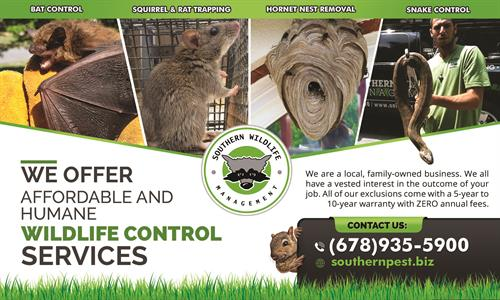 Licensed Wildlife Removal - https://southernpest.net/wildlife/