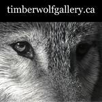 Timberwolf Gallery